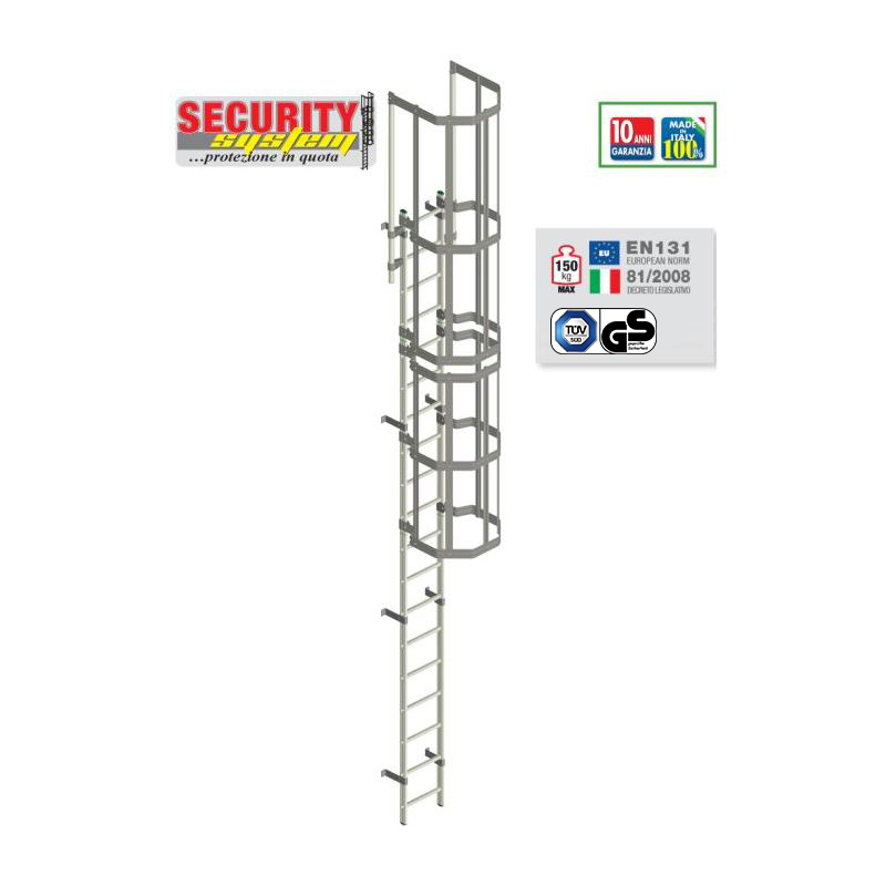 VERTICAL LADDER WITH SAFETY CAGE SECURITY SYSTEM